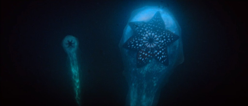 Imágenes de Contagio en alta mar (2019). No faltan elementos tentaculares lovecraftianos